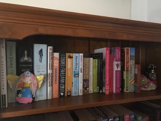 Tess's bookshelf
